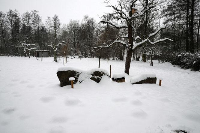 Auch im Winter schön... Foto: D. Westphal