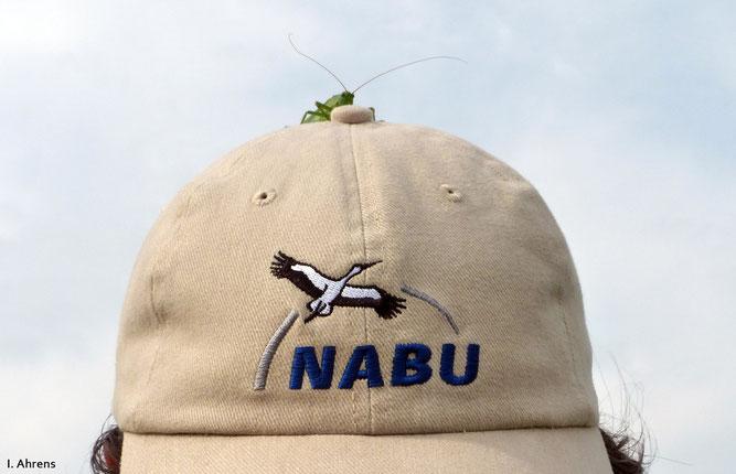 Auch Heupferde stehen auf den NABU