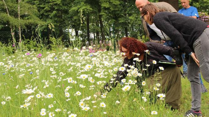 Christina Grätz zeigt Cantdorfern und Naturschützern, was in ihren Blühwiesen gedeiht. Sie hielt zum 12. Wasser- und Naturschutztag in Spremberg einen Vortrag halten.  © Foto: Annett Igel-Allzeit