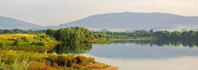 Helfen Sie mit, Naturparadiese wie die Auenlandschaft Hohenrode zu schützen und zu erhalten. - Foto: Kathy Büscher
