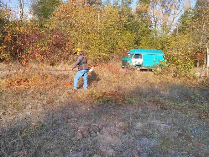 Wiesenpflege mit dem Freischneider, Foto: M. Fluck