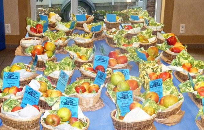 Apfelsortenvielfalt - Bettina Schroeder