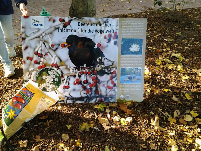 Eine Bildtafel informiert über die heimische Natur. Foto: Gemeinde Steinkirchen