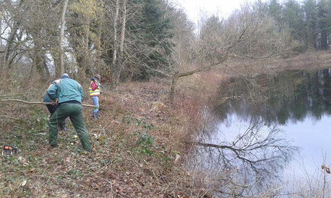 Fleißige Ehrenamtliche entfernen den Aufwuchs am Ufer. Foto: Bettina Schroeder