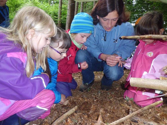 In der Waldwoche lernen die Jungen und Mädchen, wie wunderbar und wertvoll die Natur ist.
