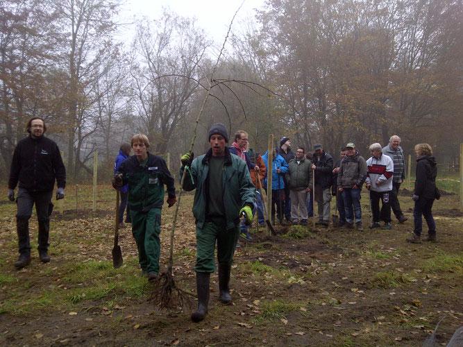 Pflanzung einer Streuobstwiese mit vielen Beteiligten, Bremervörde