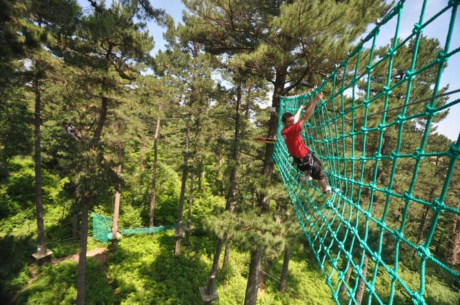 Vivez des sensations fortes avec le Parc Aventure acrobranche Oihana