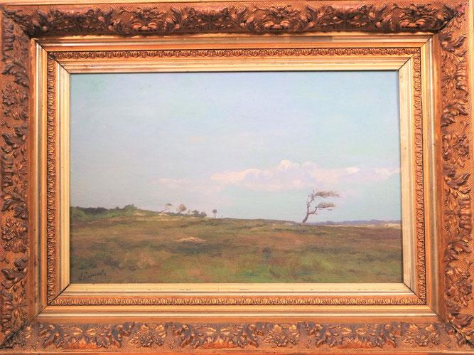 te_koop_aangeboden_een_schilderij_van_willem_johannes_oppenoorth_1847-1905_de_haagse_school