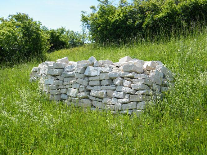 Trockensteinmauer (Foto: NABU Mainz/Dorothee Dümig)
