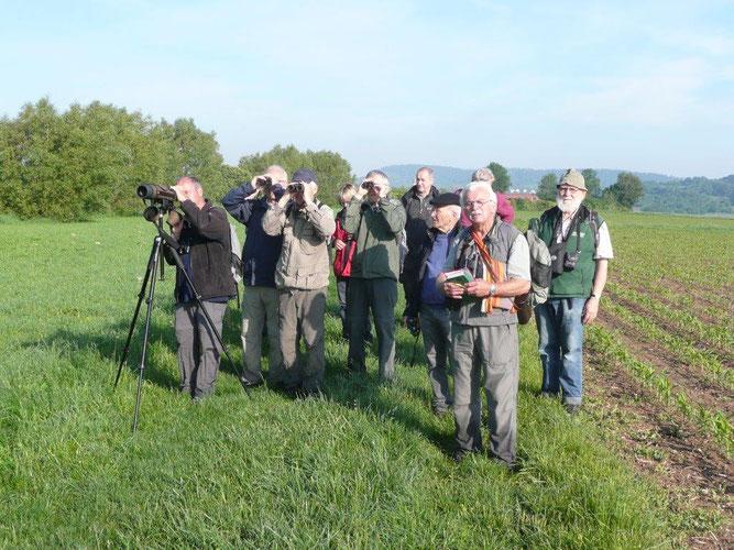 Karl Haldenwang führt traditionell die vogelkundliche Führung