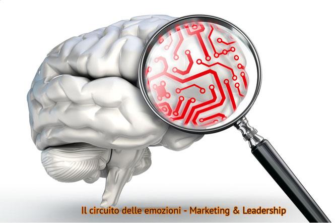 intelligenza emotiva: il circuito delle emozioni