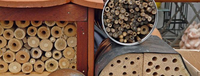 Wildbienen-Nisthilfen, Foto: A. Treffer, NABU Wiesloch