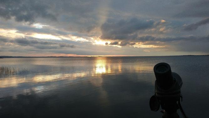 So schön begann der Zähltag am Achterwasser auf dem Gnitz / Foto: NABU Insel Usedom, K. Räsch