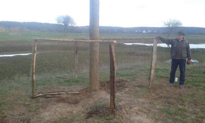 19. März: Ein Verbissschutz gegen die Pferde wurde um den Mast montiert - Foto: Stefan Wagner