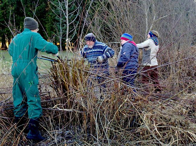 NABU-Mitglieder beim Pflege-Einsatz am Schlangenweiher