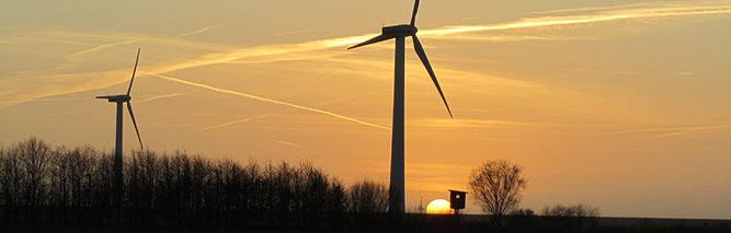 Windkraftanlagen bei Hülsing (Foto: Kenneth Witt)
