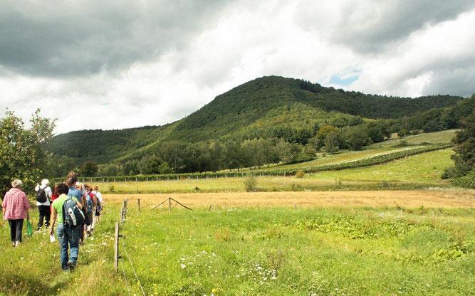 Exkursion auf dem Adelberg (Foto: C. Schauroth)
