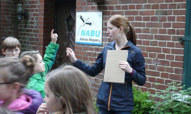 Praktikum, Kindergruppe, Umweltbildung