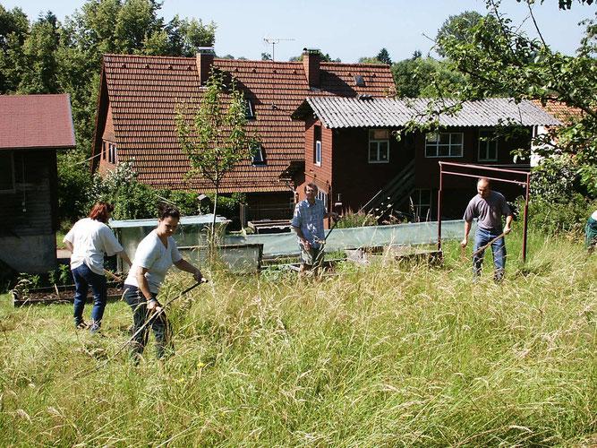 NABU-Mitglieder beim Sensen einer Wildblumenwiese. (Foto: Hofherr)