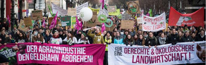 Foto: Nick Jaussi/wir-haben-es-satt.de