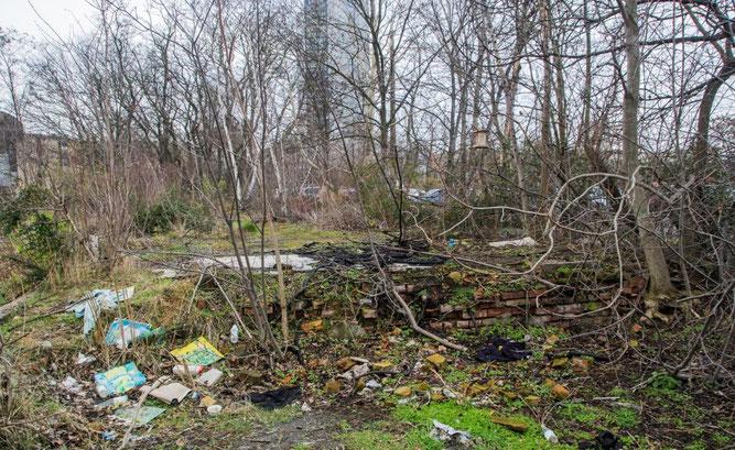 Der Wilhelm-Leuschner-Platz soll kein Müllplatz sein! Foto: Ludo Van den Bogaert