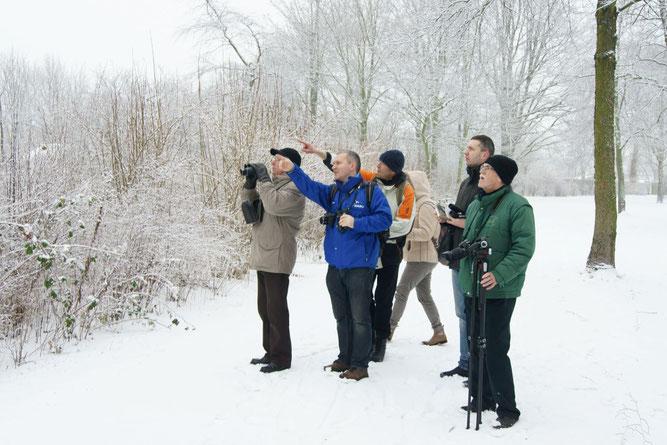 Die Stunde der Wintervögel bei winterlichem Wetter mit Frost und Schnee. Foto: René Sievert