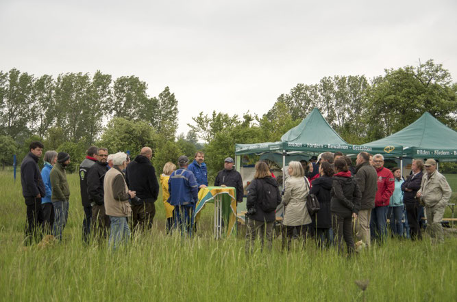 Festliche Eröffnung der Schmetterlingswiesensiason auf dem Biotop Plaußig. Foto: Ina Ebert