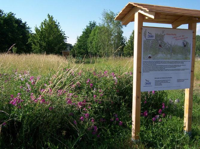 Mit mehreren Tafeln informiert der NABU Leipzig über die Ausgestaltung der Biotopfläche. Foto: Steffen Wagner