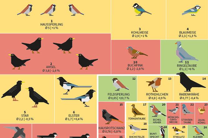 Wie geht es den häufigsten Vogelarten?