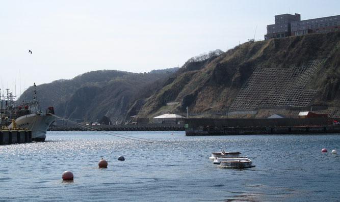 写真中央の「光る屋根」が「龍飛館(旧奥谷旅館)」です。 龍飛漁港からの風景