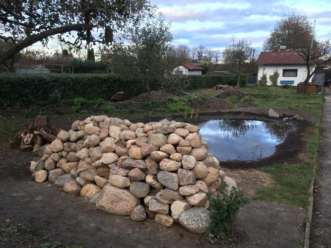 Der Naturgarten mit frisch angelegtem Lichtteich und Lesesteinmauer. Foto: NABU/Felix Krüger