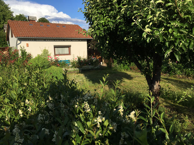 Treffpunkt Gartenhaus am Tag der offenen Tür Foto: NABU/Felix Krüger