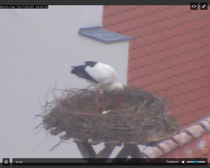 Foto: webcam der Stadt Biberach