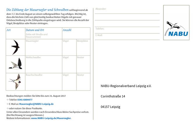 Zählkarte für die Mauersegler- und Schwalbenbeobachtung.