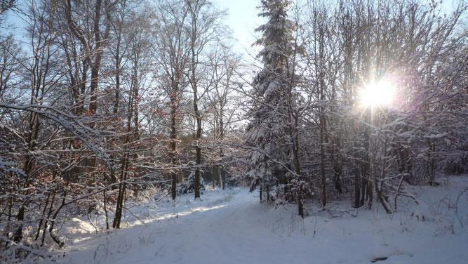 Winterlandschaft bei Boos