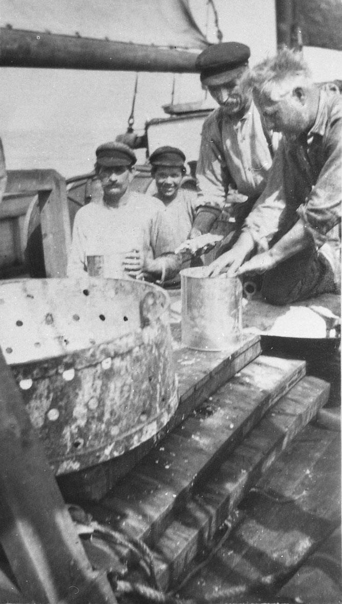 « Mise en boite du thon séparé des écailles et des arêtes, les boites contiennent 10 kg de poisson »