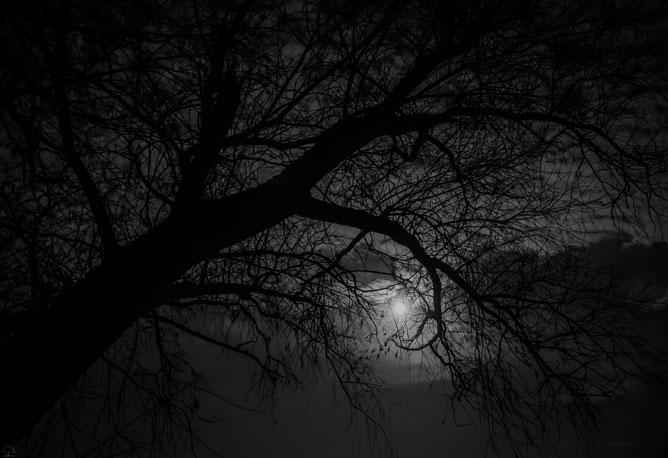 depression - detailbilder.de fotos im detail präsentiert - Körperliche Schwäche Depression