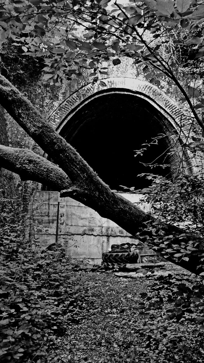Tunnel Waldwisse