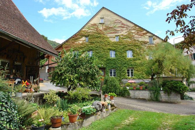 Landleben pur: Ansicht an das Wohnhaus von Westen, links im Bild die Ökonomiegebäude