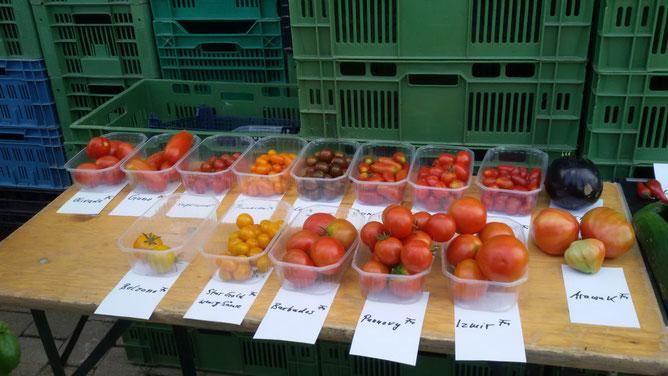Tomaten von gelb bis schwarz