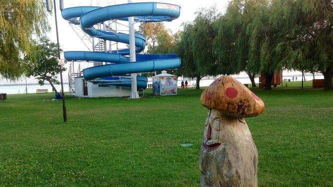 Платная водная горка и местные деревянные грибы - охранники.