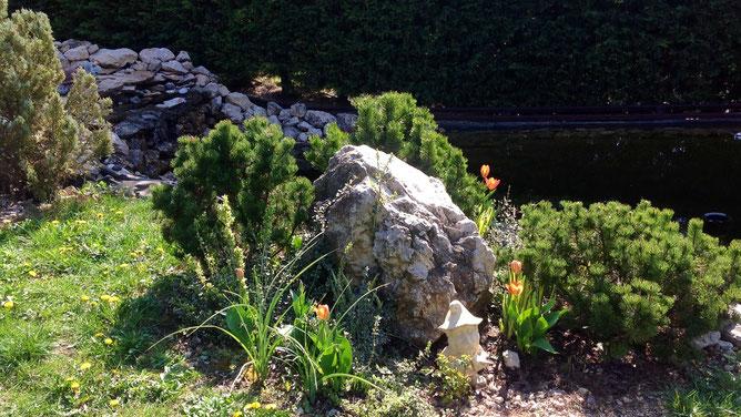 Три девицы у пруда щебетали до утра. Ой, простите... Три сосны растут у камня, рядом гном и ирисы.