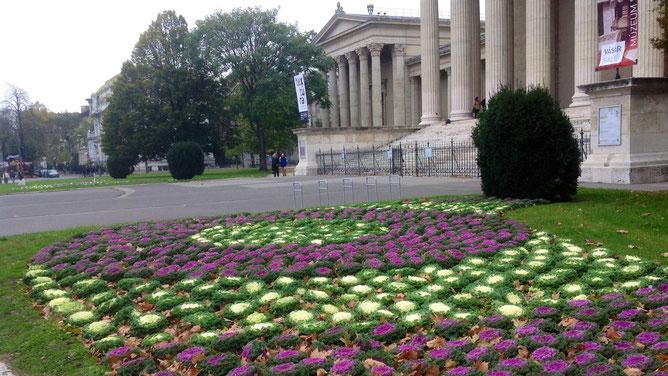Осенний цветочный ковер рядом с Музеем изобразительных исскуств