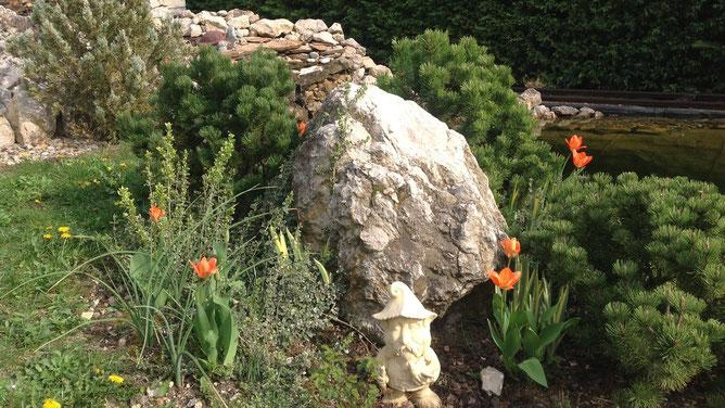 Камень-гигант во всей своей каменной красе в окружении зеленых жителей.