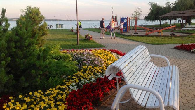 Вымощенные дорожки и белые скамеечки в окружении ярких цветников и клумб. Здесь все радует взгляд.
