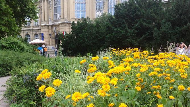 Желто-зеленая клумба в центре замкового комплекса радует солнечным позитивом.