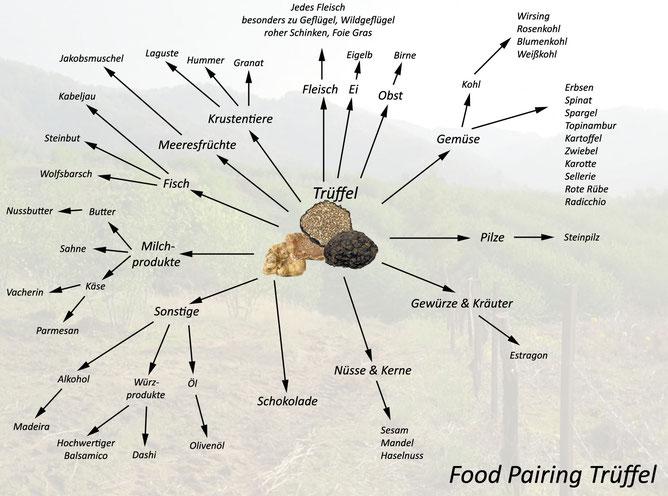 Fooed Pairing Trüffel - Welche Lebensmittel passen hervorragend zum Trüffel