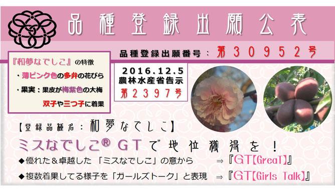 登録出願公表 和夢なでしこ 和×夢 nagomu farm