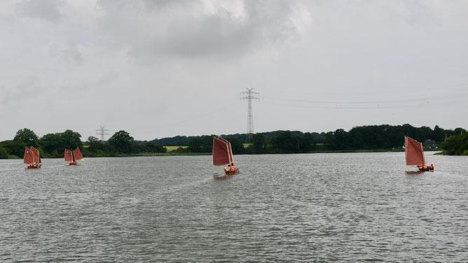 Robinsons kurz vor der Kurve bei Rabelsund/Schlei