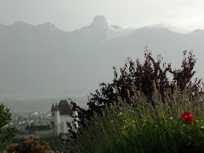 Blick vom Bräntlisberg auf Schloss Thun